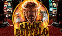 Ragin' Buffalo